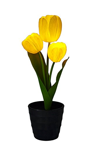 dbest products Flower Luminescence, Yellow Tulips