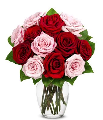 From You Flowers – Red Roses, Pink Roses, Oh My! – One Dozen (Free Vase Included)