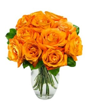 From You Flowers – One Dozen Orange Roses – Exotic! (Free Vase Included)