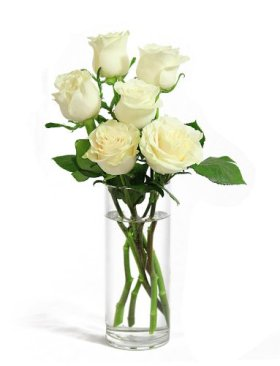 Bouquet of Long Stemmed White Roses (Half Dozen) – With Vase