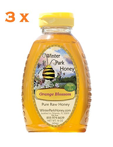 Orange Blossom Honey 48oz (Raw Honey – 3x16oz Winter Park Honey Orange Blossom)