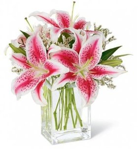Fresh Cut Flowers – Pink Lily Bouquet