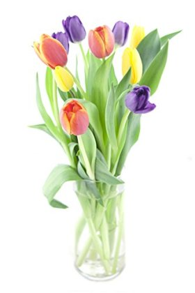 Rainbow Tulip Bouquet (10 Stems) – With Vase