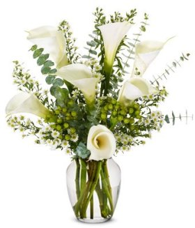 From You Flowers – Sympathy Calla Lilies (Free Vase Included)