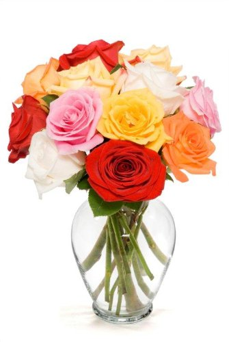 Benchmark Bouquets Dozen Rainbow Roses, With Vase