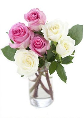 Bouquet of Long Stemmed Pink and White Roses (Half Dozen) – With Vase