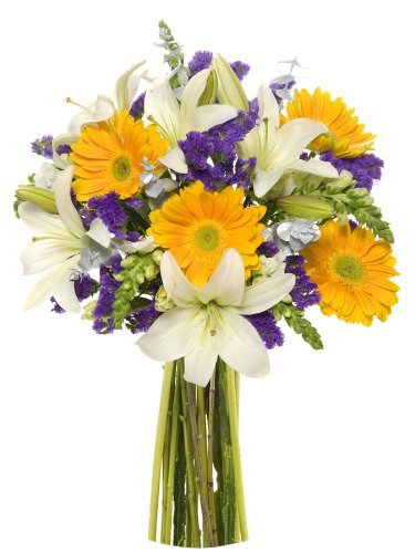 Enchanted Flowers – Eshopclub Online Fresh Flowers – Wedding Flowers Bouquets – Birthday Flowers – Send Flowers – Flower Delivery – Flower Arrangements – Floral Arrangements – Flowers Delivered – Sending Flowers
