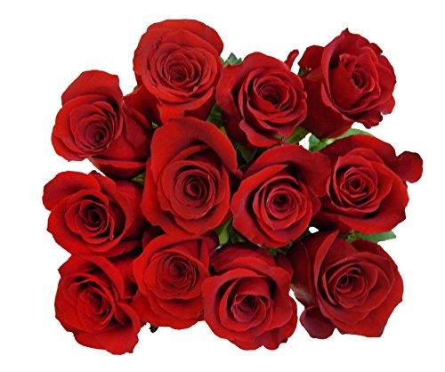 100 Fresh Red Roses   Valentine's Day