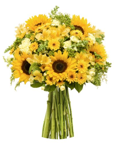 Benchmark Bouquets Rays of Sunshine, No Vase