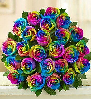 1-800-Flowers – Kaleidoscope Roses – 24 Stems Bouquet Only