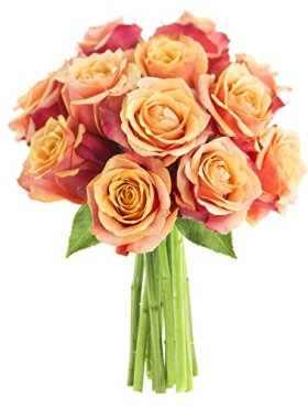 Long-stemmed Orange Roses (One Dozen) – Without Vase
