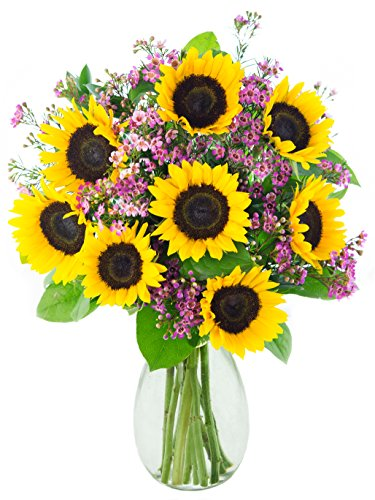 KaBloom Golden Delight with Sunflowers with Vase, 2.1 Pound