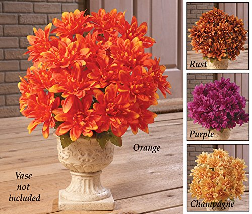 Floral Chrysanthemum Bushes – Set Of 3 Champagne