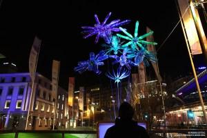 Flowers of Change de Pierre Estève au Festival des Lumières de Lausanne
