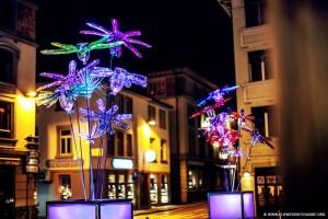 L'oeuvre Flowers of Flowers of Change de Pierre Estève au Festival des Lumières de LausanneChange de Pierre Estève au Festival des Lumières de Lausanne
