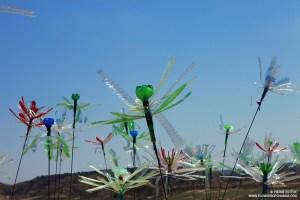 L'oeuvre Flowers of Change de Pierre Estève lors du Festival NoWhere
