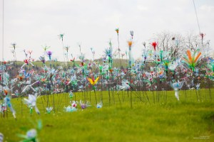 Flowers of Change de Pierre Estève