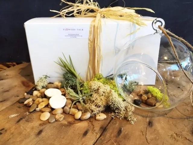 Diy Terrarium Kit Flowers Talk Tivoli