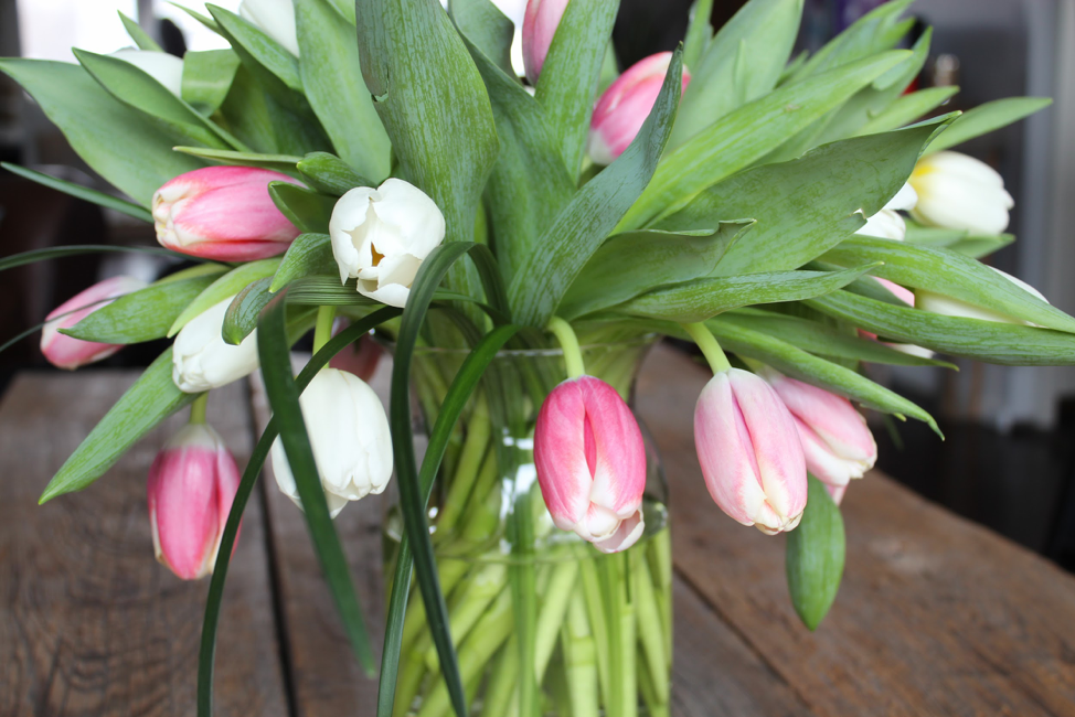 Pink and white tulips in vase