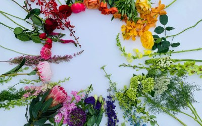 Colour Theory & Floral Design