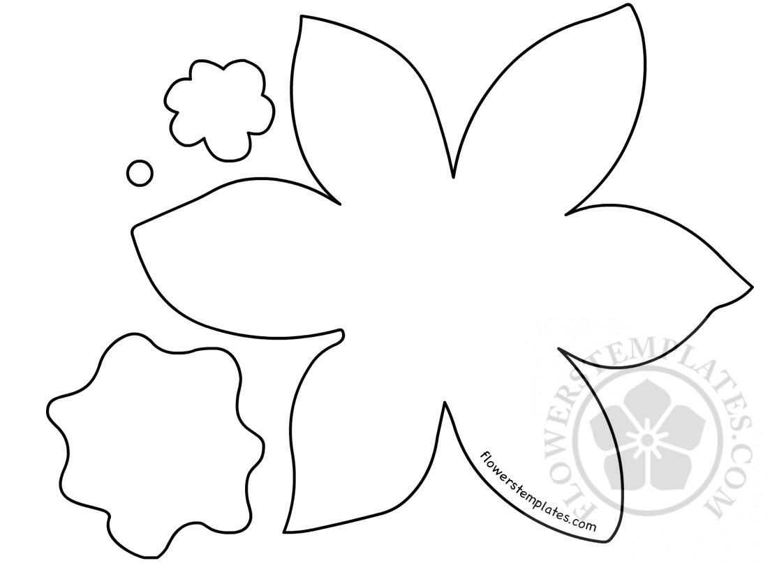 Daffodil paper flower cut out flowers templates for Template of a daffodil