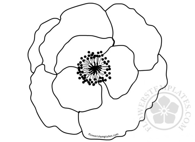 poppy flower template coloring page