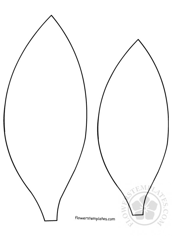 image about Sunflower Petal Template Printable identify Sunflower Petal Template Bouquets Templates