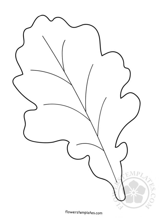 fall leaf printable autumn leaf  flowers templates