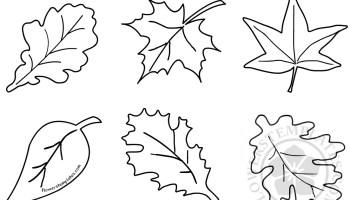 pumpkin leaf template flowers templates