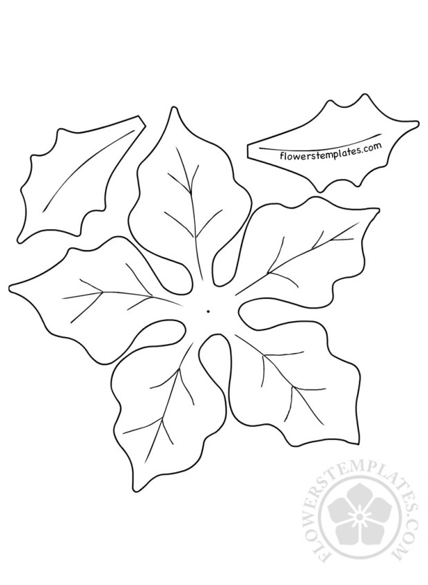 diy paper christmas poinsettia template flowers templates