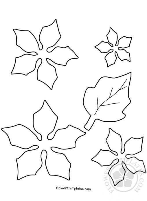 Poinsettia Flowers Templates Part 3