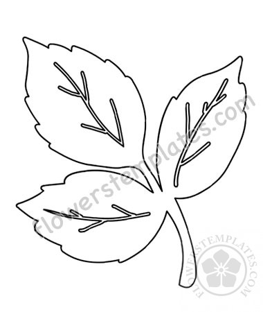 photo about Printable Rose called Printable Rose leaves template Bouquets Templates