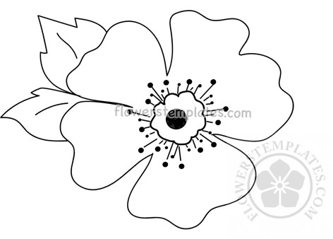 photograph regarding Poppies Printable named Poppies Bouquets Templates