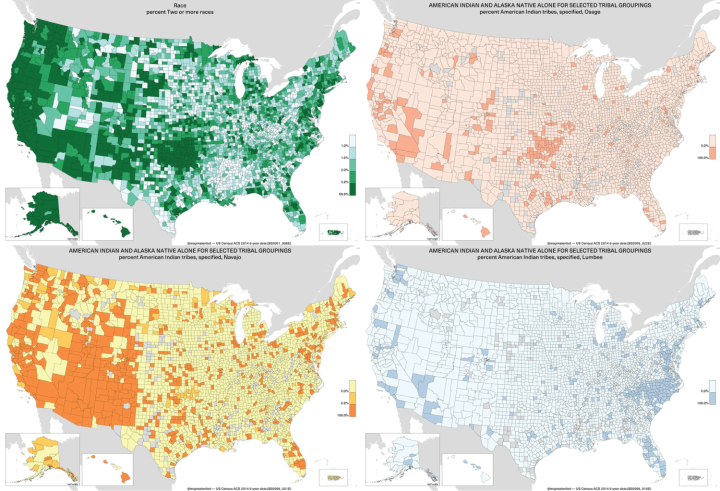 Bot Automatically Generates Maps From American Community Survey - Neil freeman us map