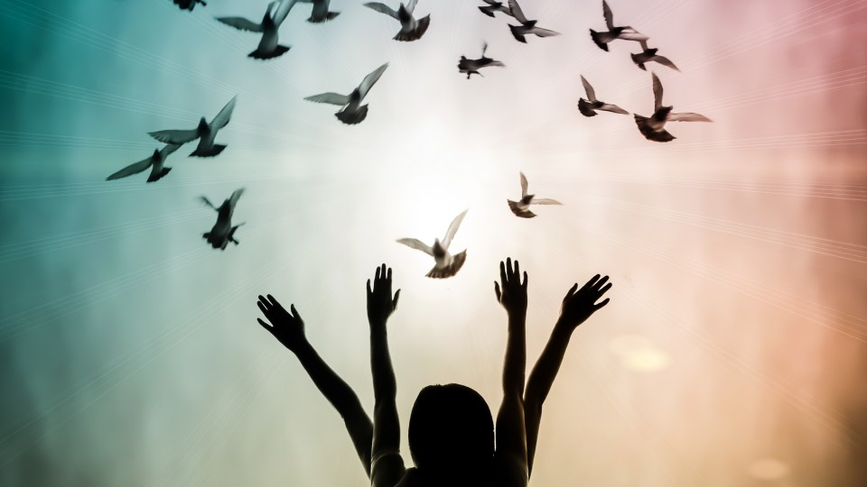 How Qigong Can Create a Path to World Peace