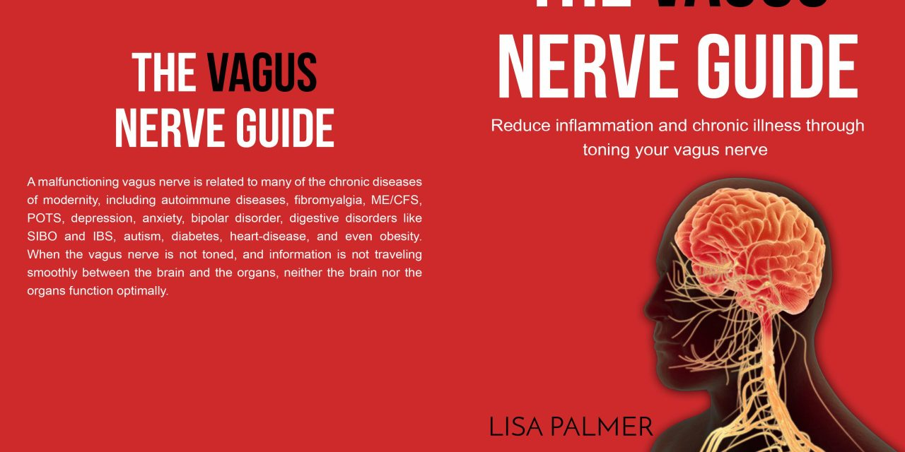 The Vagus Nerve Guide: Reduce Inflammation and Chronic Illness Through Toning Your Vagus Nerve
