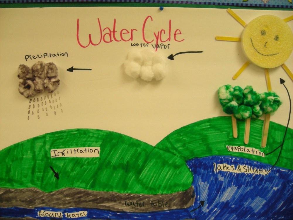 medium resolution of Floyd 7th Grade Life Science: Quick Links