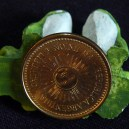 Part of good luck amulet-Argentina-Argentinian-View of copper coin-1""