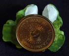 Bottom of coin from Argentina glued to frogs