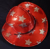Cowboy hat with star decorations