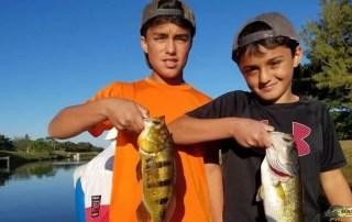 Urban South Florida Peacock Bass
