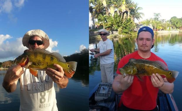 Miami Airport Lakes Fishing Charter- Peacock Bass