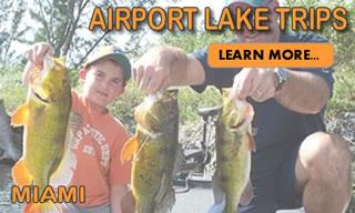 Airport Lakes Miami