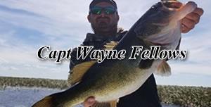 Capt Wayne Fellows - Florida Peacock bass fishing guides