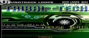 Tribal Tech House Beats Soundtrack Loops