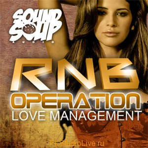 Пакет лупов - Sound Soup Audio - RnB Operation Love Management для FL Studio