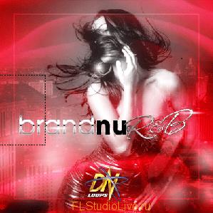 Набор лупов и сэмплов Dn Loops - Brand Nu R&B - для FL Studio