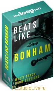 Скачать сэмплы The Loop Loft Beats Like Bonham Complete Takes Vol.5 для FL Studio
