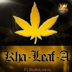 Сэмплы Mystic Kingz - Kha-Leaf-A Vol 1 для FL Studio