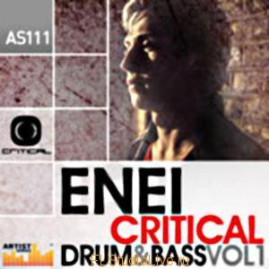 Сэмплы Loopmasters Enei Critical Drum and Bass Volume 1 для FL Studio
